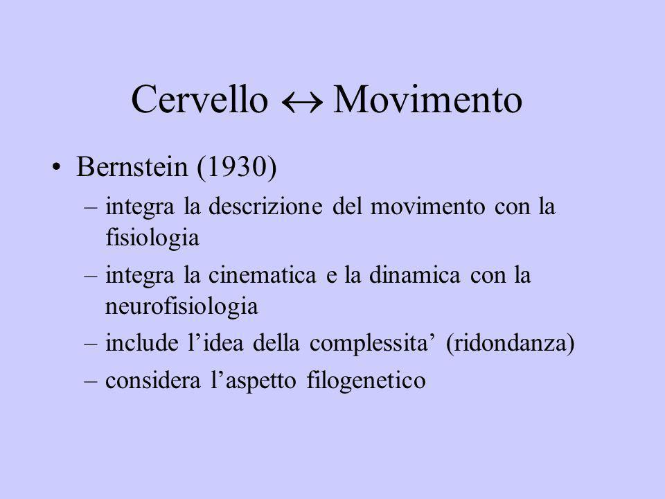 Cervello  Movimento Bernstein (1930)