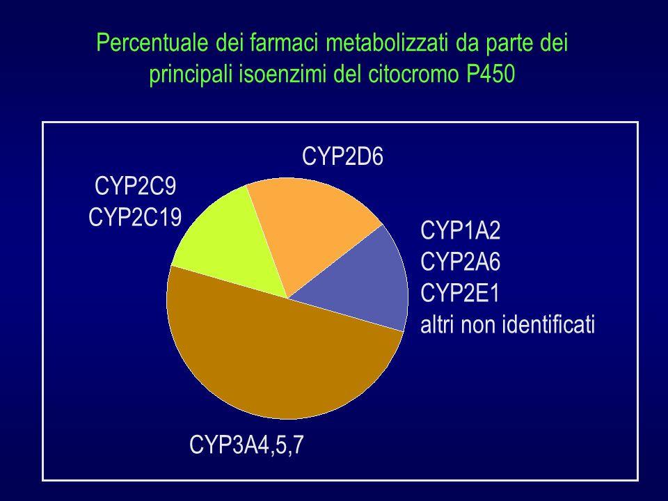 Percentuale dei farmaci metabolizzati da parte dei principali isoenzimi del citocromo P450