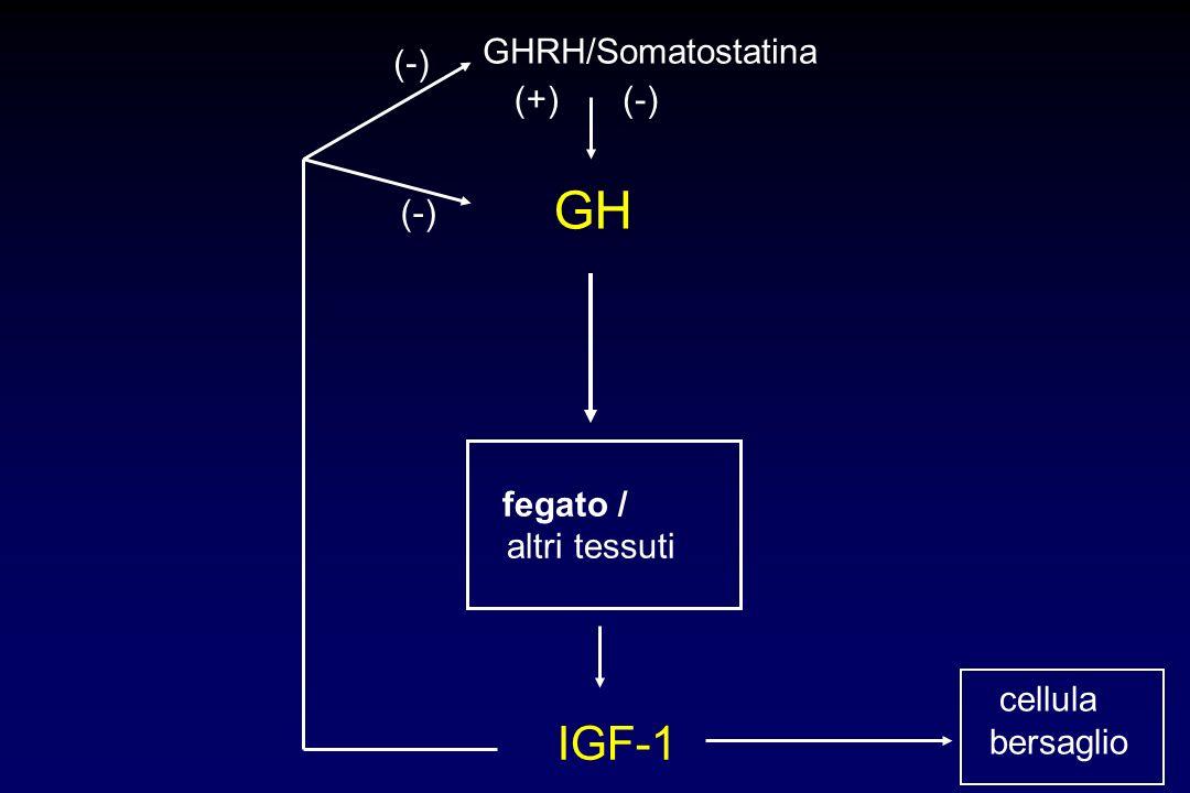 GH IGF-1 GHRH/Somatostatina (-) (+) (-) (-) altri tessuti cellula