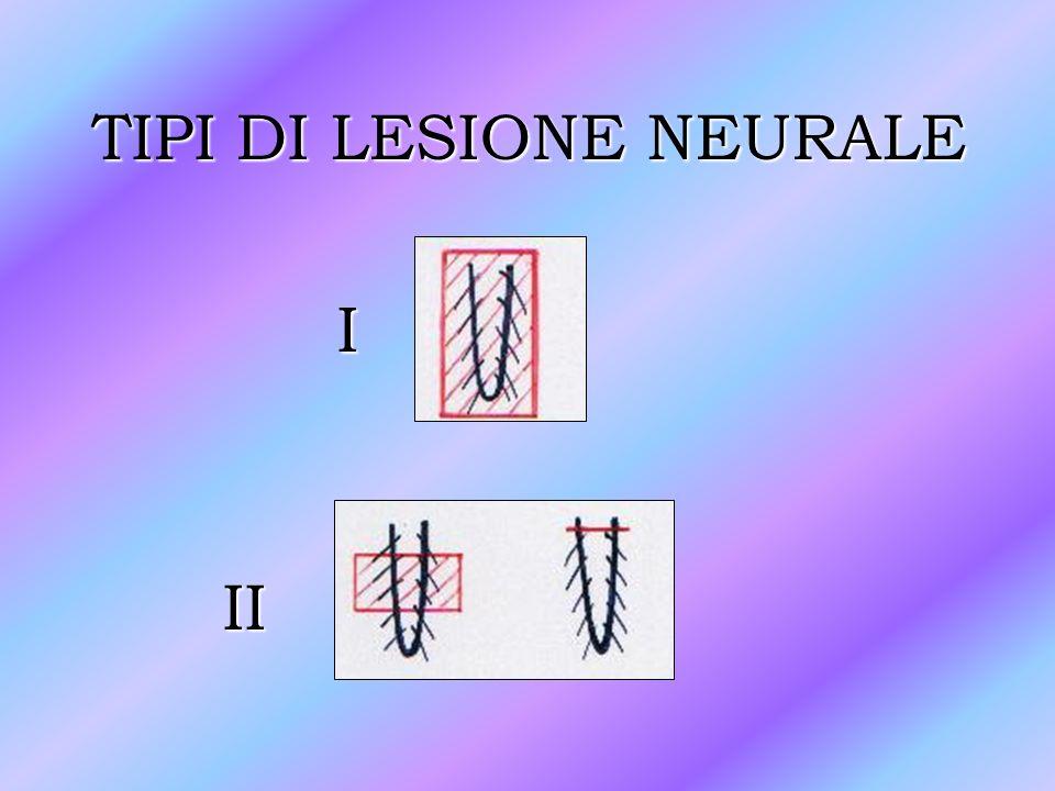 TIPI DI LESIONE NEURALE