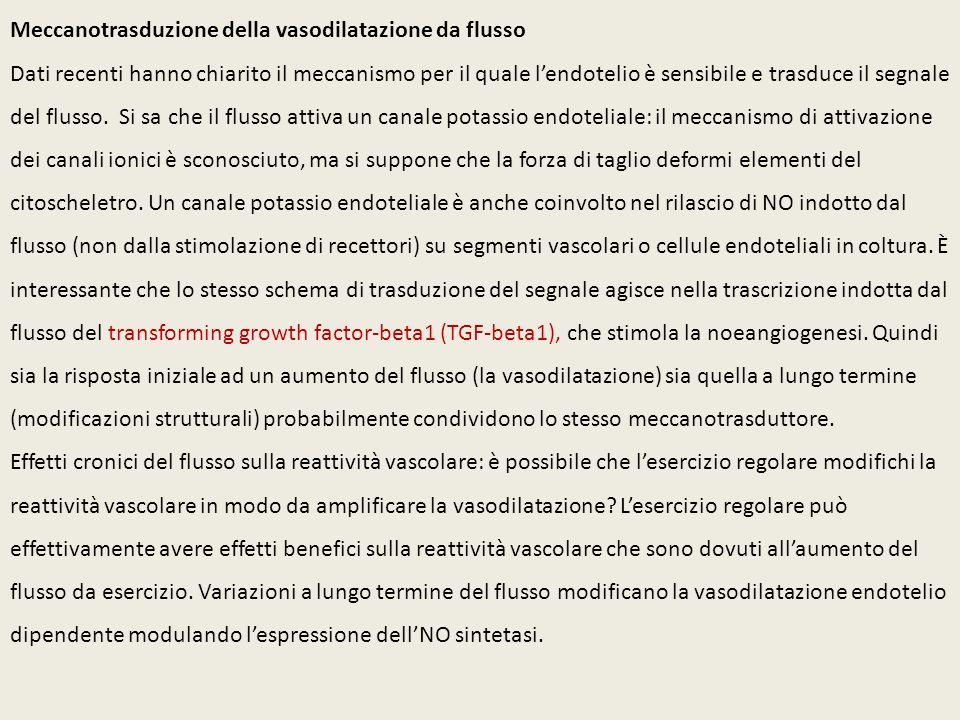 Meccanotrasduzione della vasodilatazione da flusso