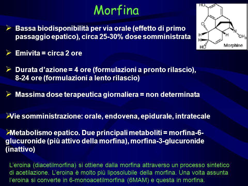 Morfina Bassa biodisponibilità per via orale (effetto di primo passaggio epatico), circa 25-30% dose somministrata.