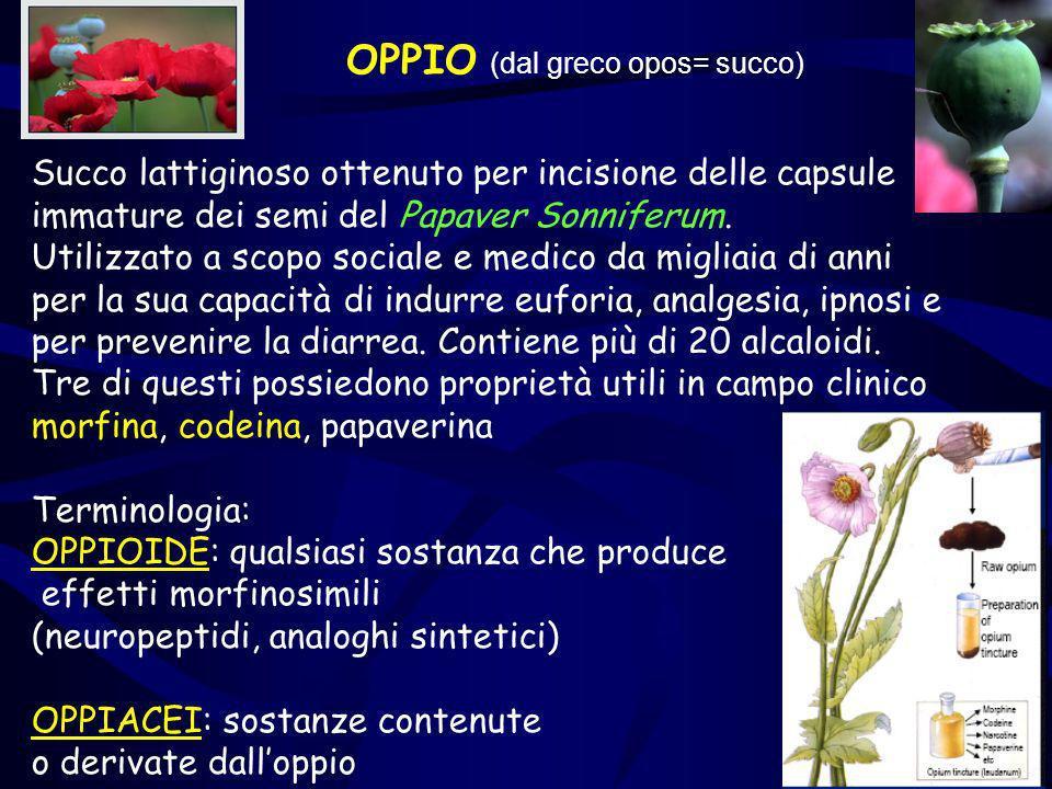 OPPIO (dal greco opos= succo)