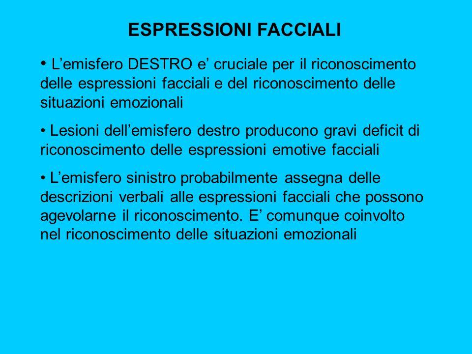 ESPRESSIONI FACCIALI L'emisfero DESTRO e' cruciale per il riconoscimento delle espressioni facciali e del riconoscimento delle situazioni emozionali.