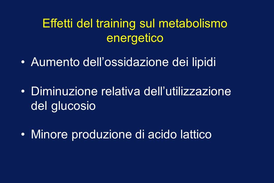 Effetti del training sul metabolismo energetico