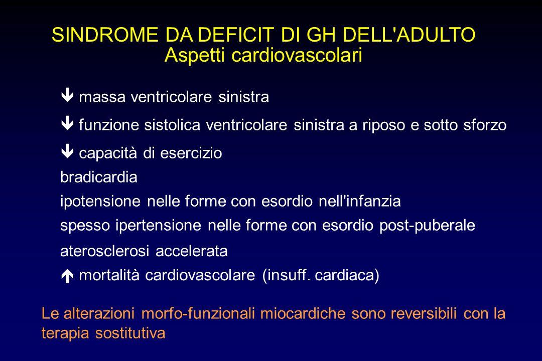 SINDROME DA DEFICIT DI GH DELL ADULTO Aspetti cardiovascolari