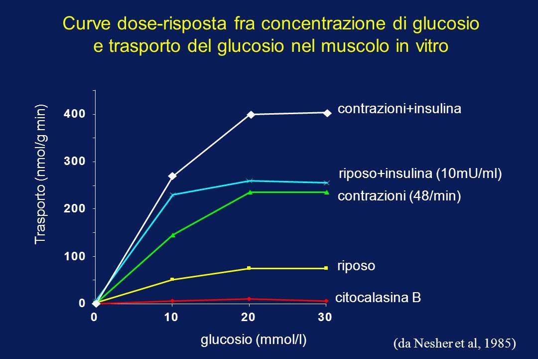 Curve dose-risposta fra concentrazione di glucosio