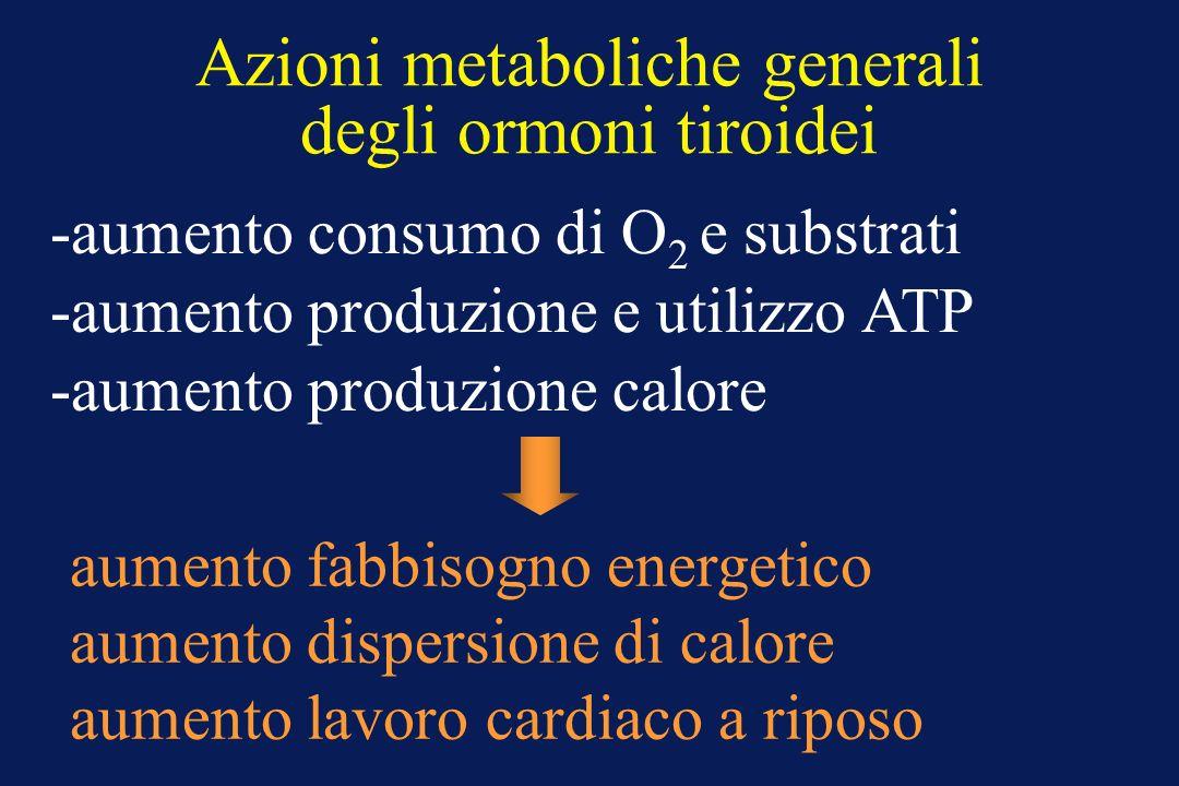 Azioni metaboliche generali