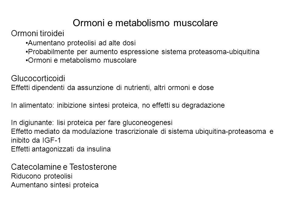 Ormoni e metabolismo muscolare