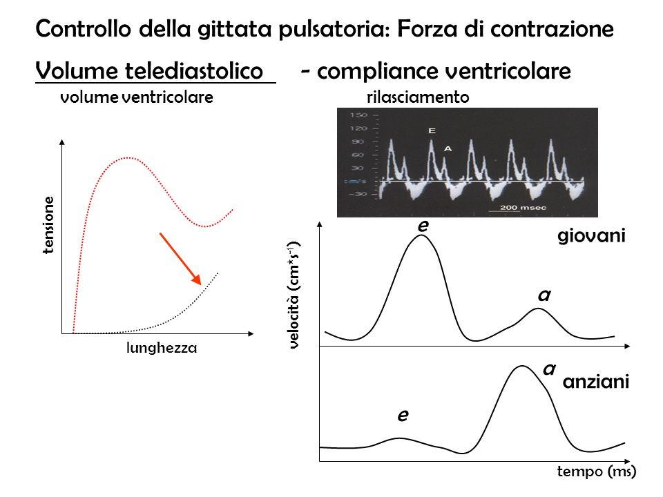 Controllo della gittata pulsatoria: Forza di contrazione