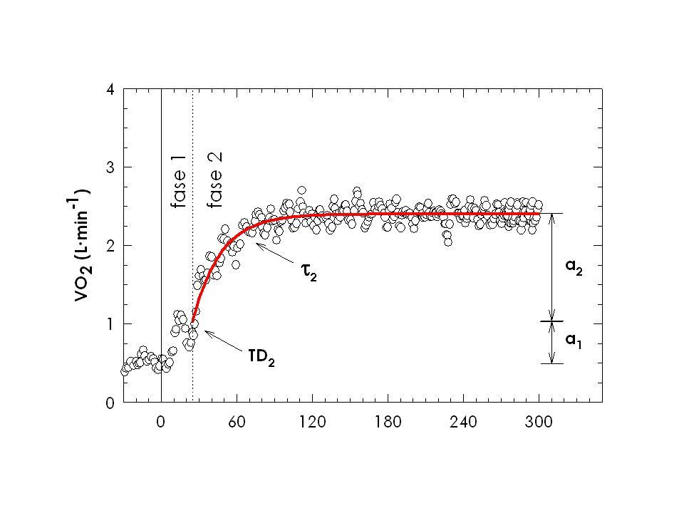 Oltre a rappresentare un indice di tolleranza allo sforzo, l'analisi delle cinetiche VO2 viene da tempo impiegata per indagare i fattori limitanti il consumo d'ossigeno nelle transizioni metaboliche. Infatti, l'analisi matematica delle variazioni di VO2 polmonare nella fase transiente dell'esercizio consente di individuale diverse fasi della cinetica del VO2 cui viene attribuito un significato fisiologico specifico