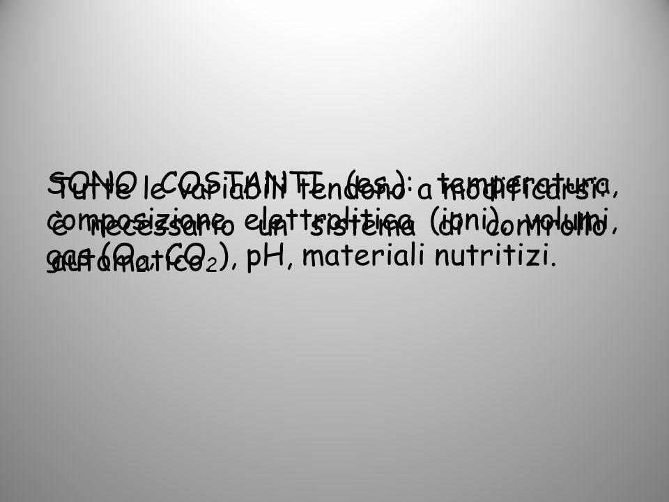 SONO COSTANTI (es.): temperatura, composizione elettrolitica (ioni), volumi, gas (O2, CO2), pH, materiali nutritizi.
