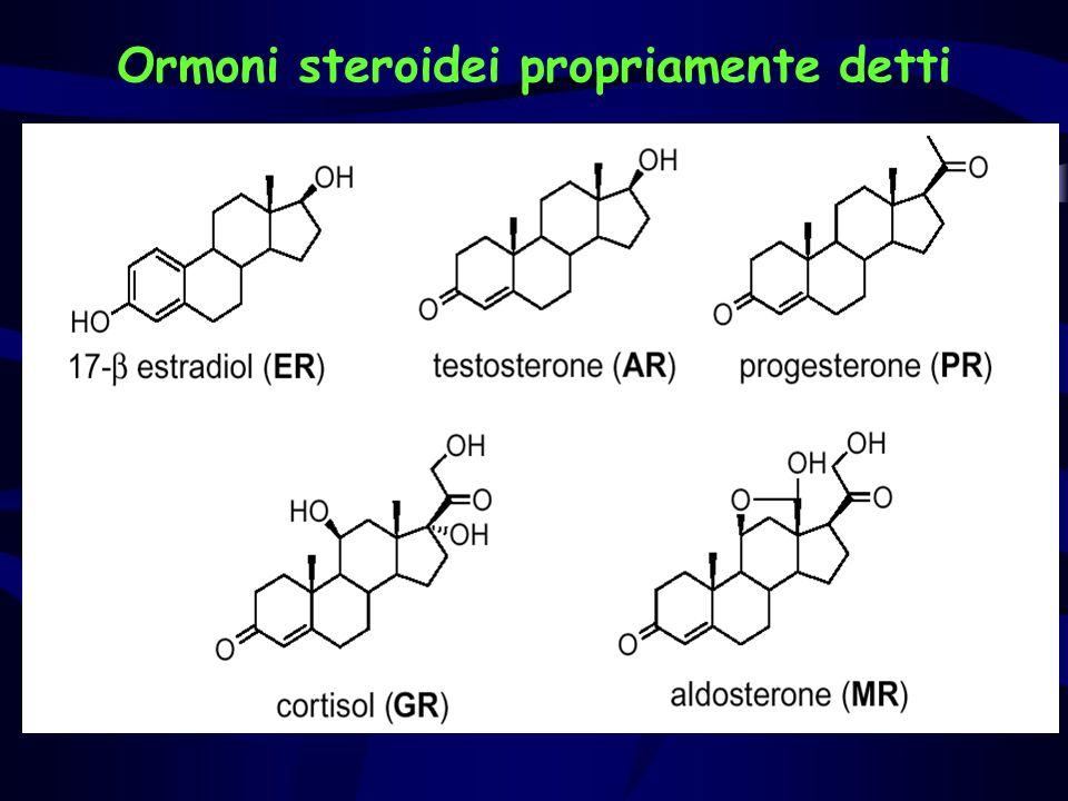 Ormoni steroidei propriamente detti