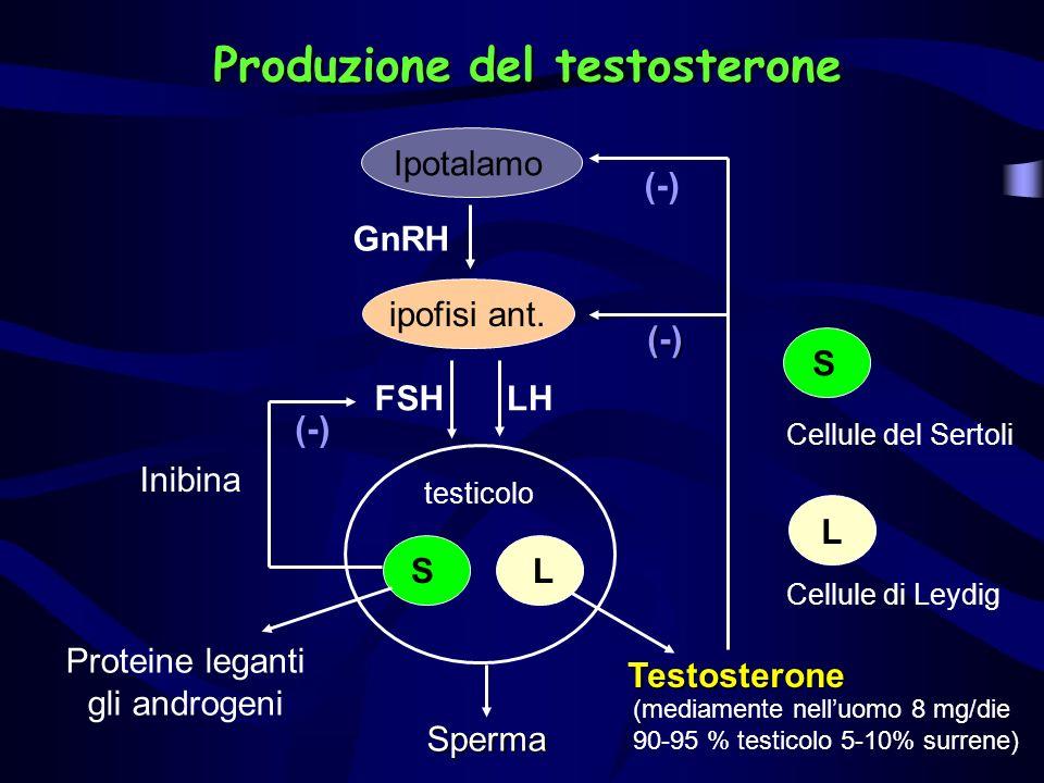 Produzione del testosterone