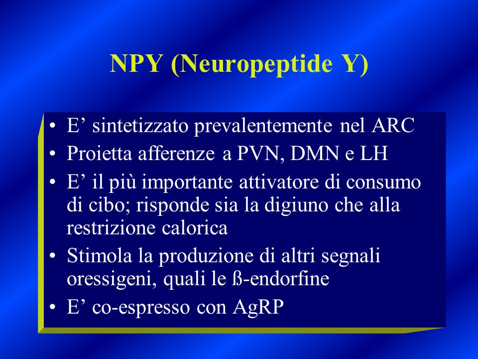 NPY (Neuropeptide Y) E' sintetizzato prevalentemente nel ARC