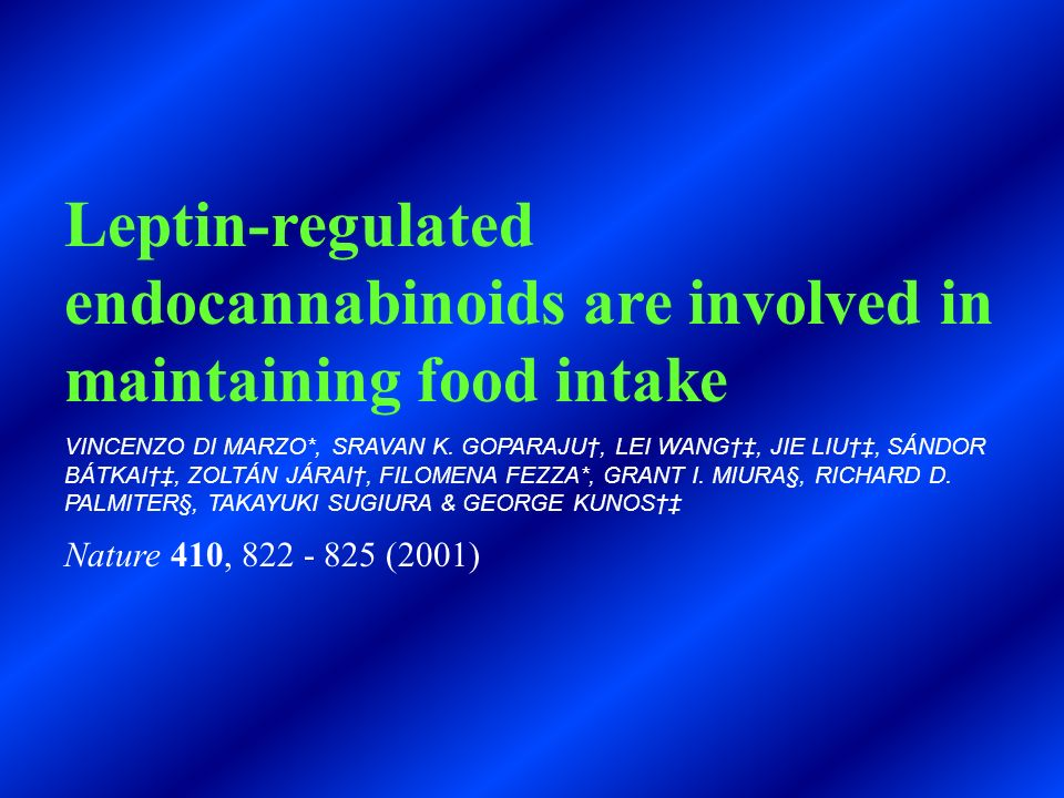 Leptin-regulated endocannabinoids are involved in maintaining food intake