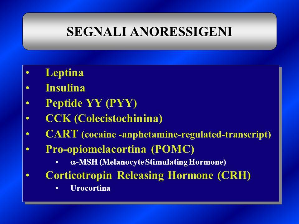 SEGNALI ANORESSIGENI Leptina Insulina Peptide YY (PYY)