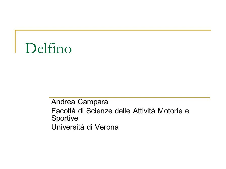 Delfino Andrea Campara