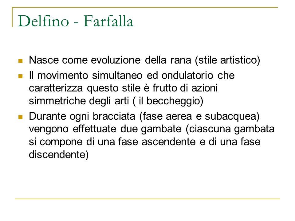 Delfino - Farfalla Nasce come evoluzione della rana (stile artistico)