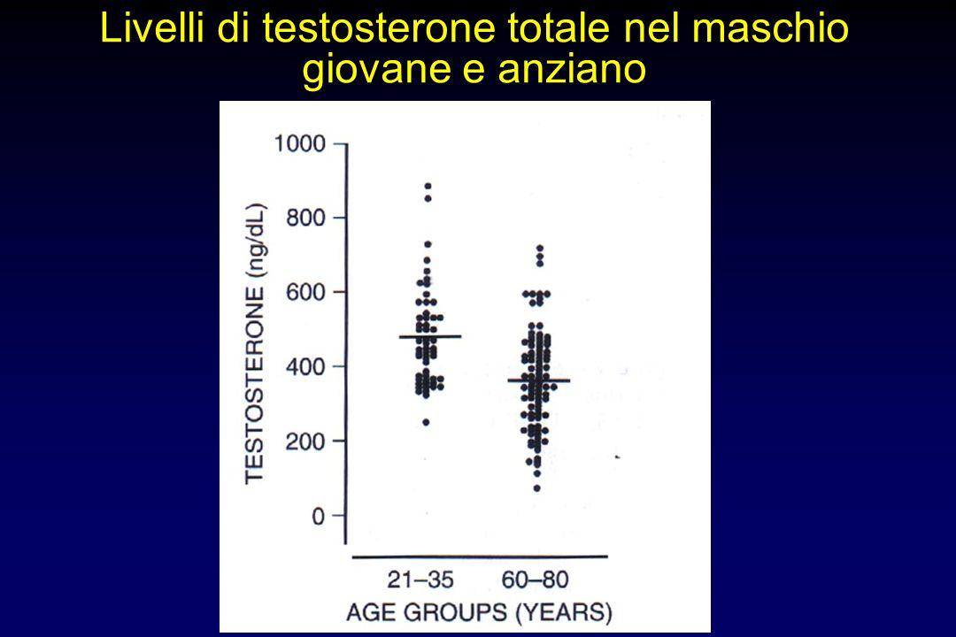 Livelli di testosterone totale nel maschio giovane e anziano