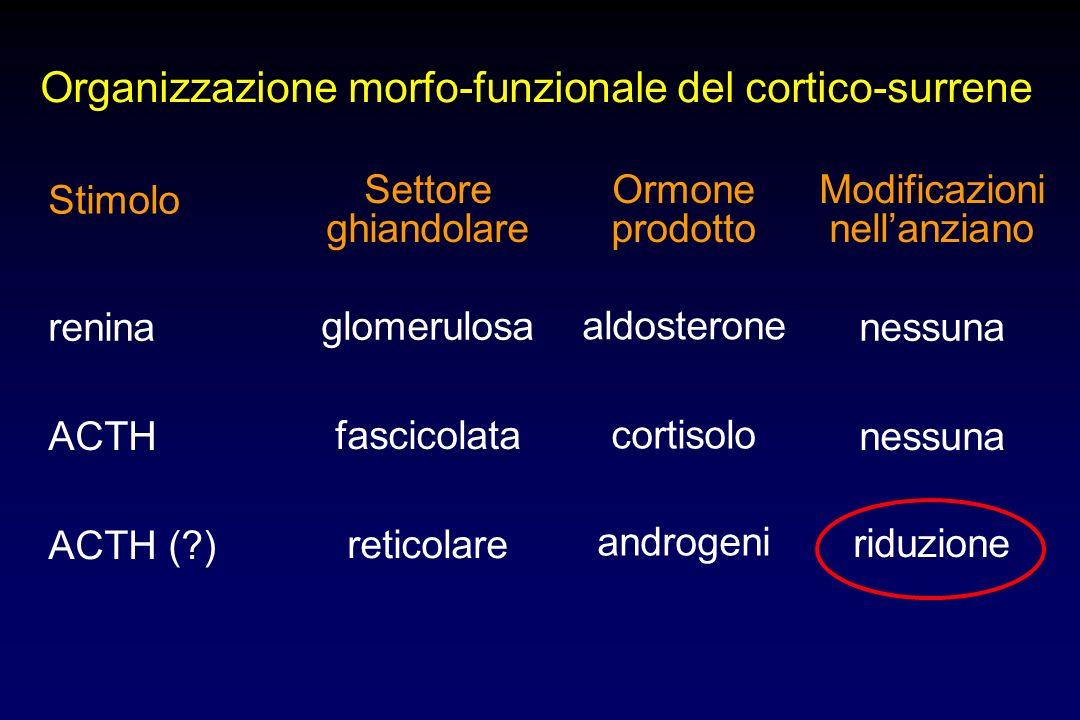 Organizzazione morfo-funzionale del cortico-surrene