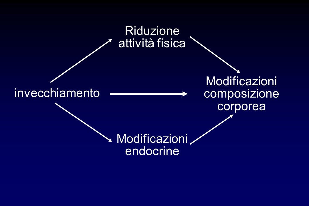Modificazioni composizione corporea invecchiamento