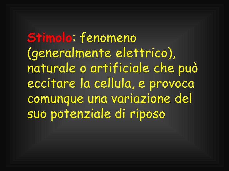 Stimolo: fenomeno (generalmente elettrico), naturale o artificiale che può eccitare la cellula, e provoca comunque una variazione del suo potenziale di riposo