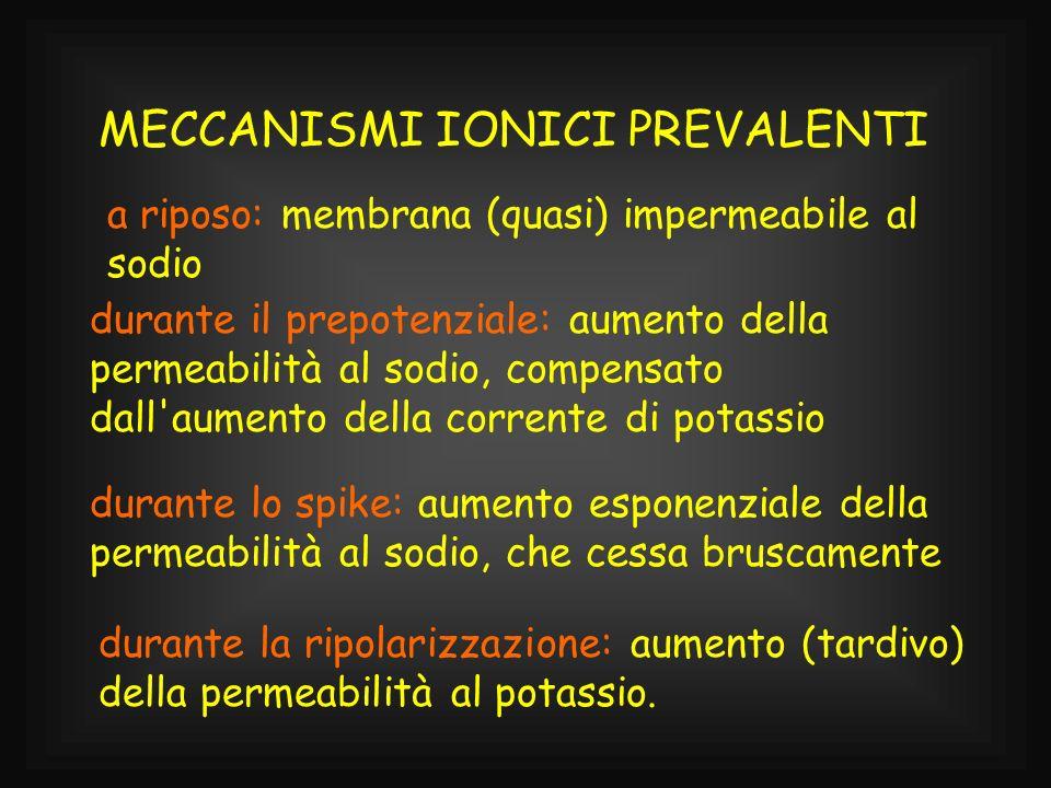 MECCANISMI IONICI PREVALENTI
