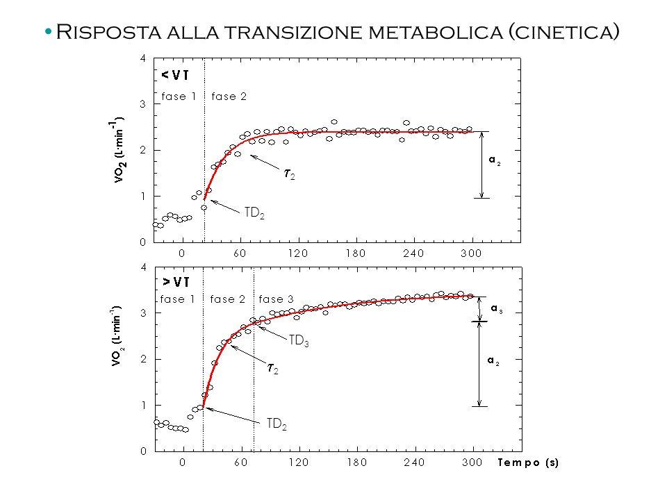 Risposta alla transizione metabolica (cinetica)