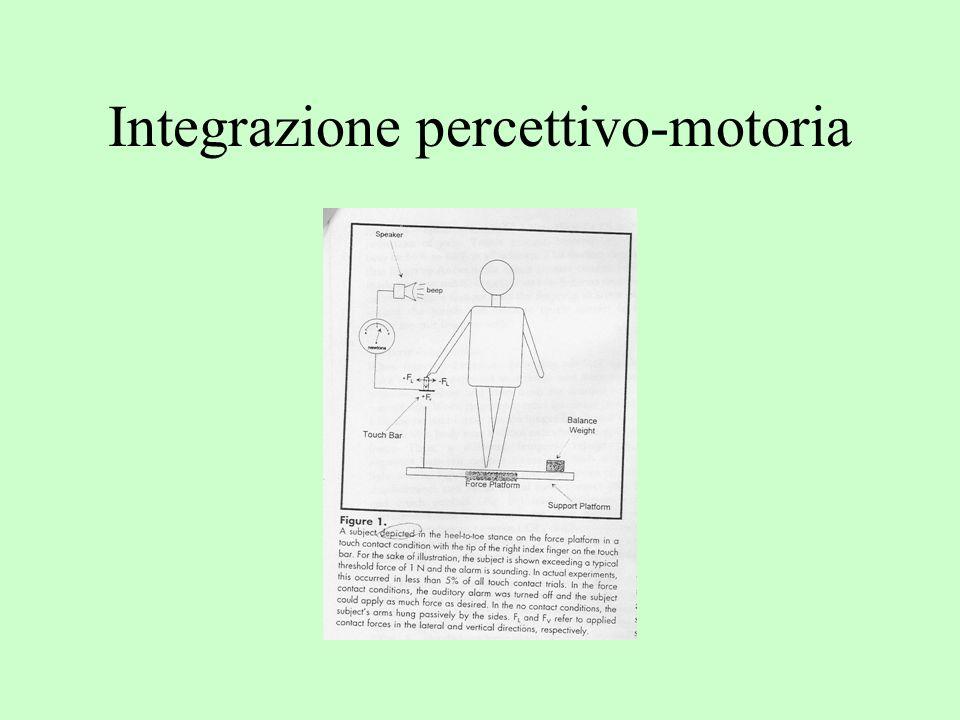 Integrazione percettivo-motoria