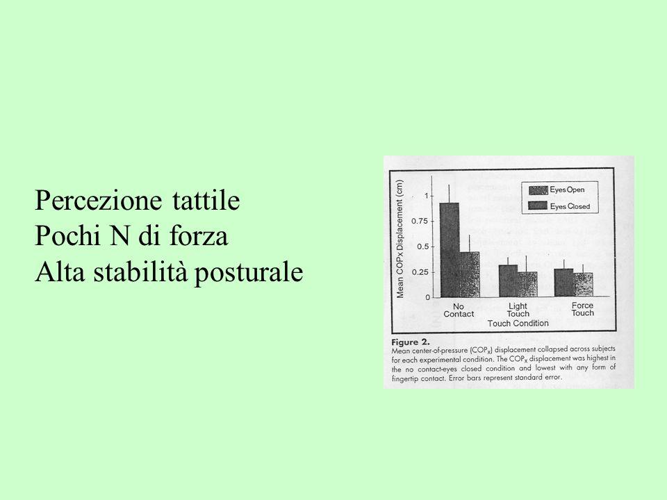 Percezione tattile Pochi N di forza Alta stabilità posturale