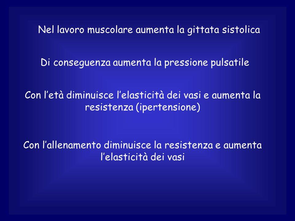 Nel lavoro muscolare aumenta la gittata sistolica
