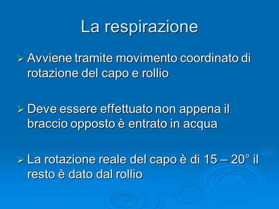 La respirazione Avviene tramite movimento coordinato di rotazione del capo e rollio.