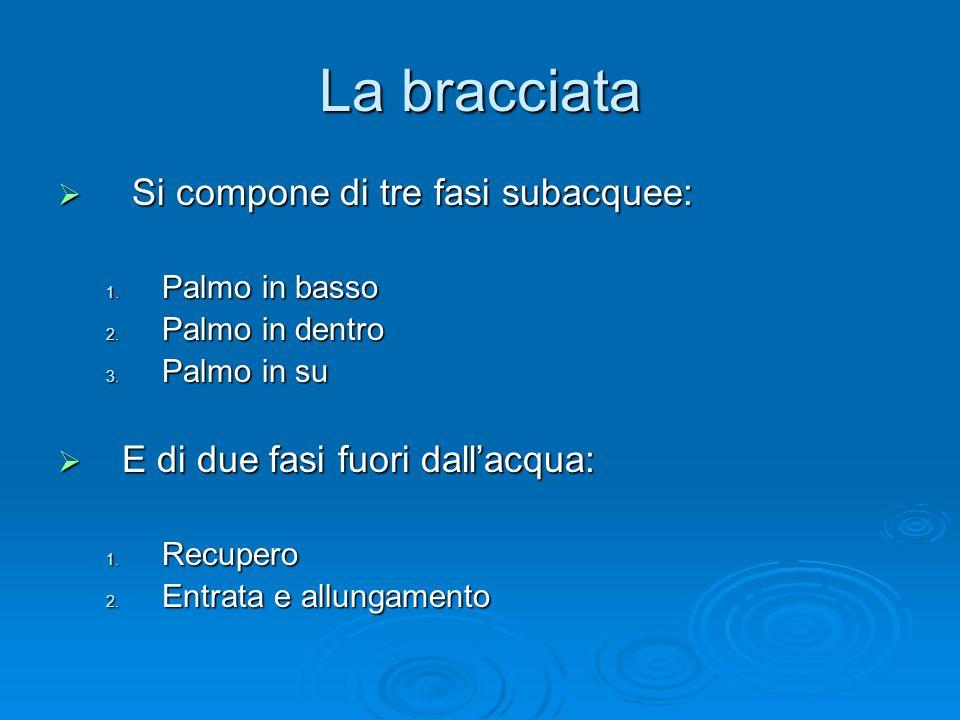 La bracciata Si compone di tre fasi subacquee: