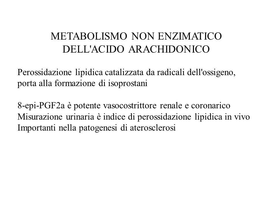 METABOLISMO NON ENZIMATICO DELL ACIDO ARACHIDONICO