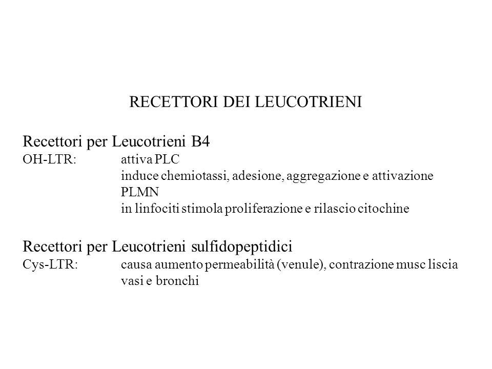 RECETTORI DEI LEUCOTRIENI