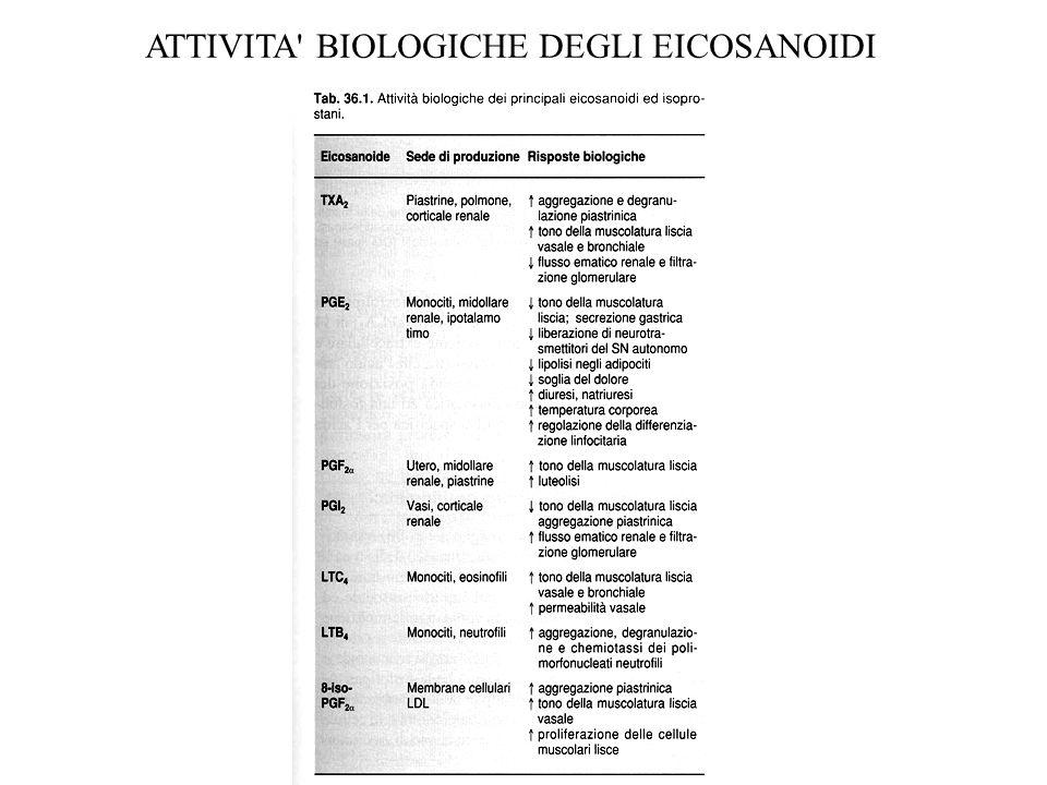 ATTIVITA BIOLOGICHE DEGLI EICOSANOIDI