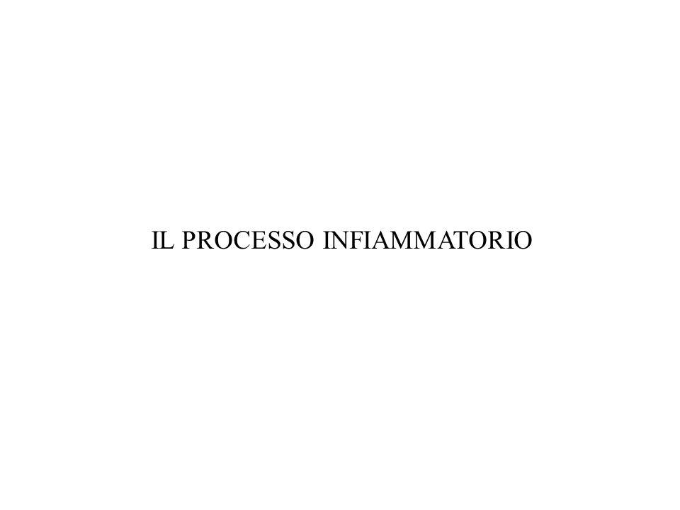 Il processo infiammatorio