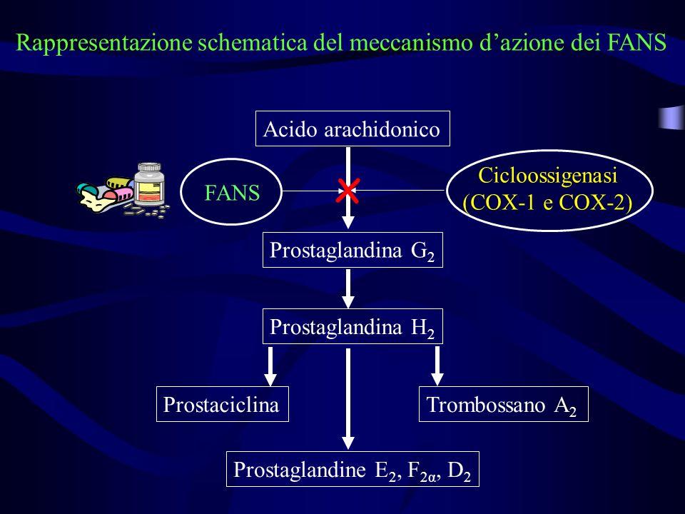 Cicloossigenasi (COX-1 e COX-2)