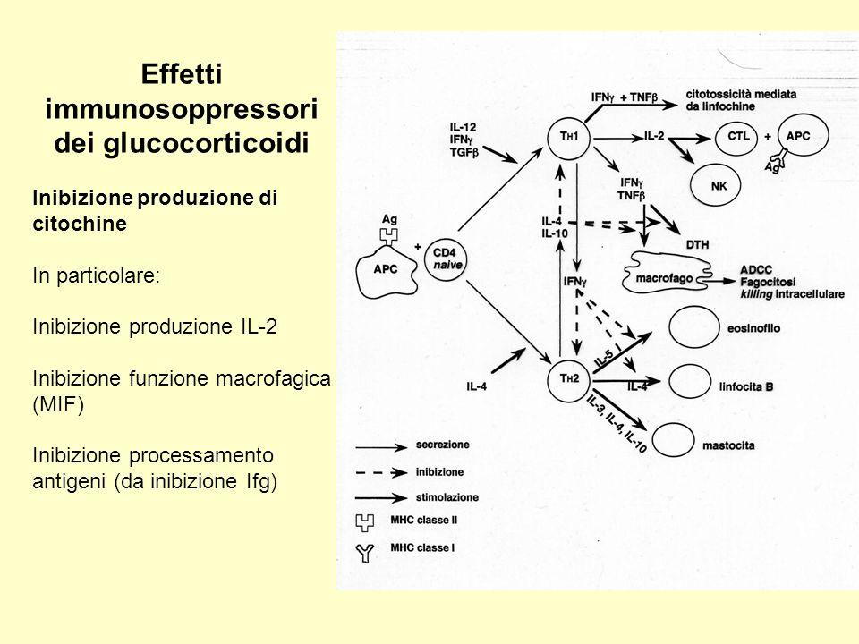 Effetti immunosoppressori dei glucocorticoidi
