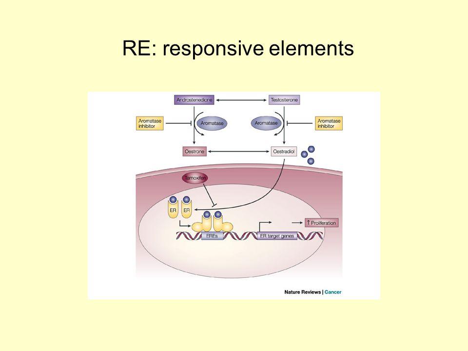 RE: responsive elements
