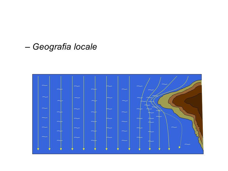 Geografia locale