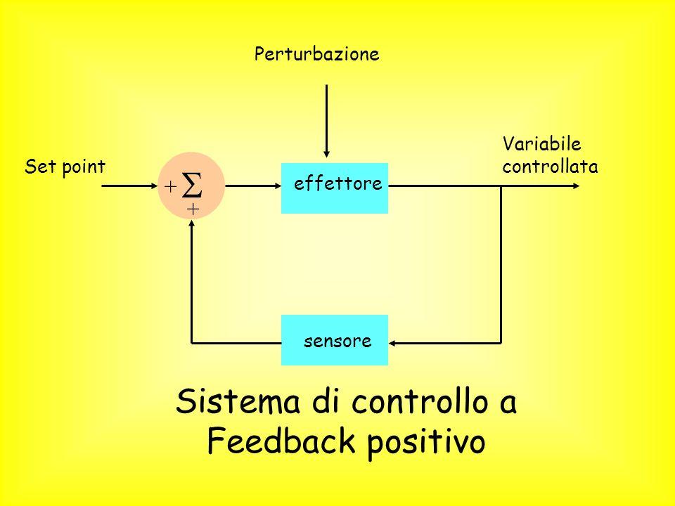 Sistema di controllo a Feedback positivo