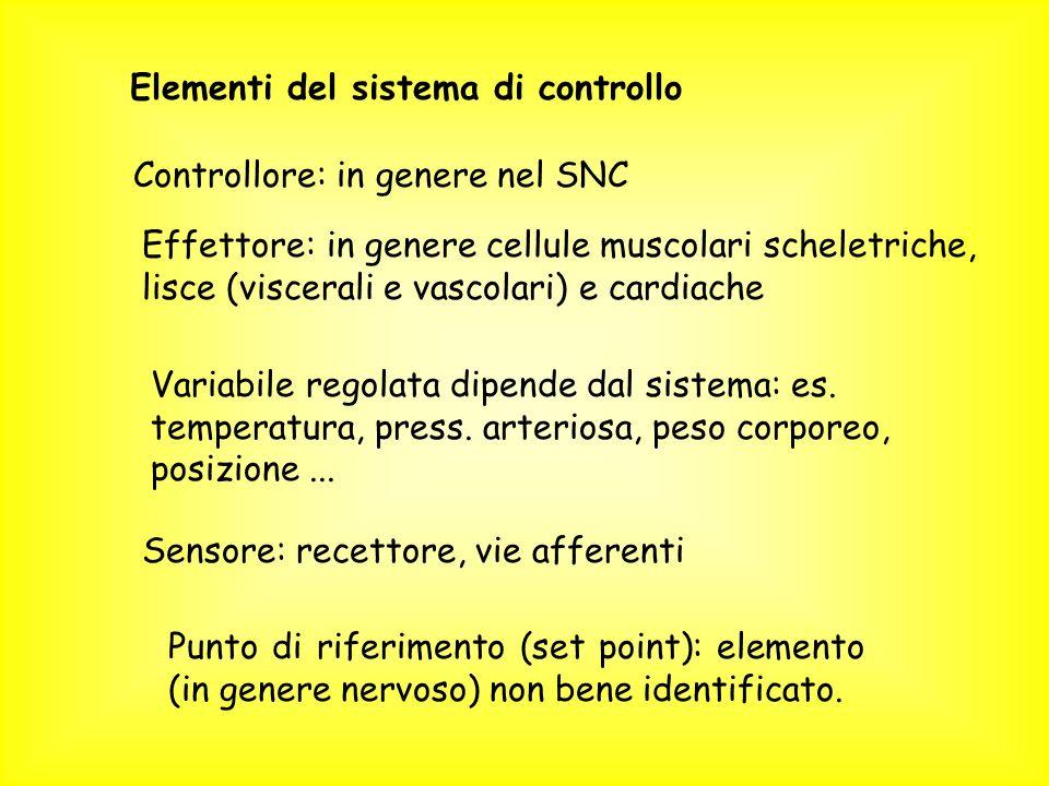 Elementi del sistema di controllo