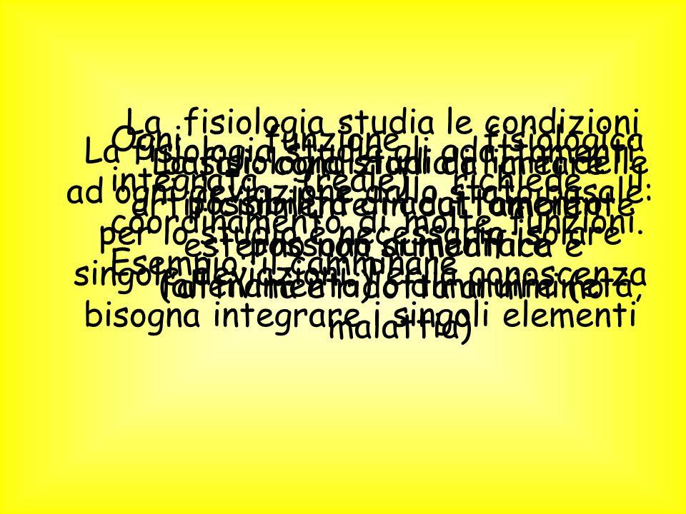 La fisiologia studia le condizioni basali: condizioni da creare artificialmente in cui l'ambiente esterno non si modifica e l'attività è ridotta al minimo