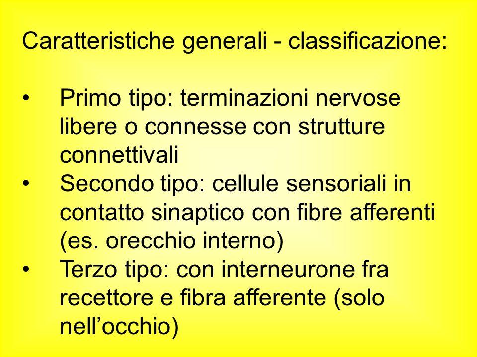 Caratteristiche generali - classificazione: