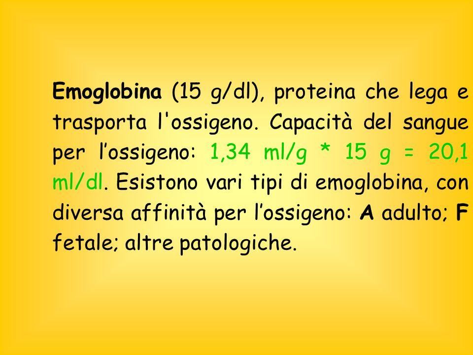 Emoglobina (15 g/dl), proteina che lega e trasporta l ossigeno