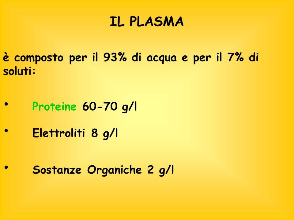 IL PLASMA è composto per il 93% di acqua e per il 7% di soluti: