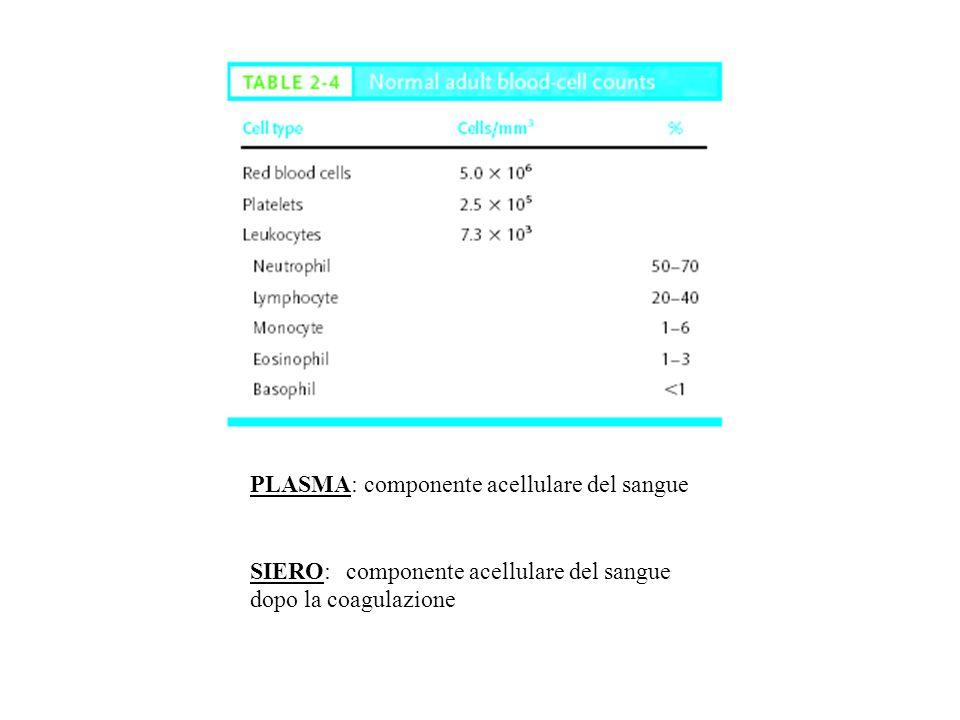 PLASMA: componente acellulare del sangue