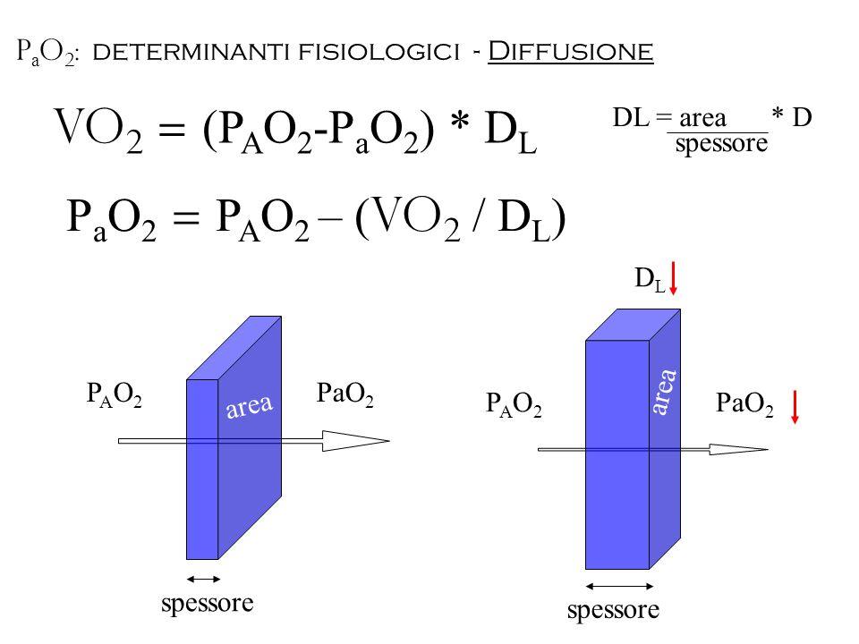 VO2 = (PAO2-PaO2) * DL PaO2 = PAO2 – (VO2 / DL)